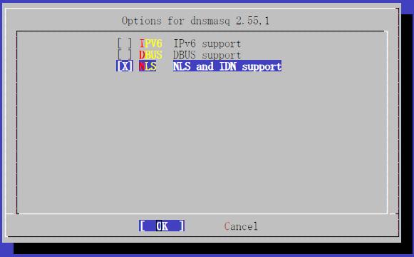 dnsmasq-options.png